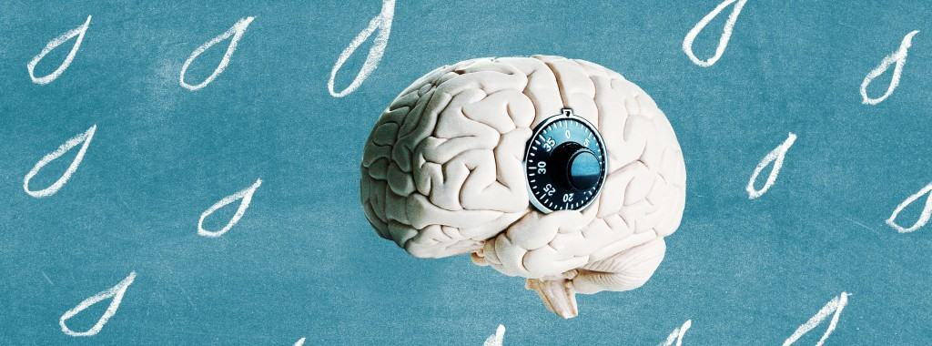 Le cerveau barré